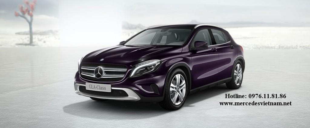 Mercedes GLA 200 2015 (6)