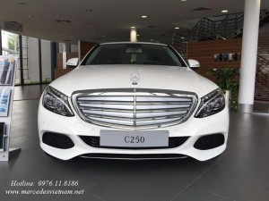 Mercedes C250 Exclusive 2016 moi (1)