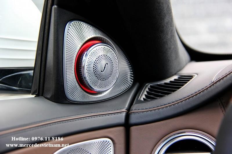 Mercedes S500 2016 (8)